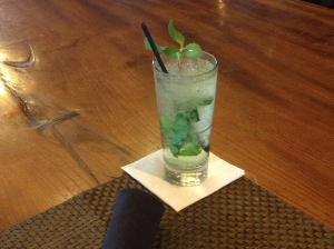 Salt Creek Grill's Irish Julep