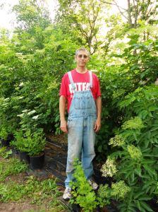 Michael Brown, Pitspone Farm, in front of European elderberries