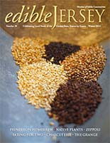 Edible Jersey cover winter 14