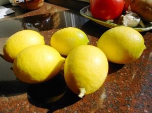Meyer lemons 006