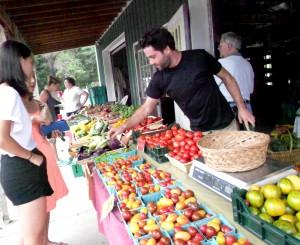 Dave Zaback, Z Food Farm