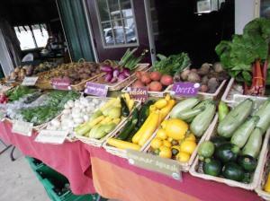 Z Food Farm
