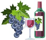 red-wine-grapes-bottle-glass-11836717
